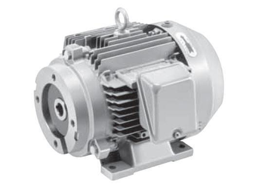 M series electric motors for Lonne electric motors usa